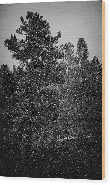 Spring Snowstorm Wood Print