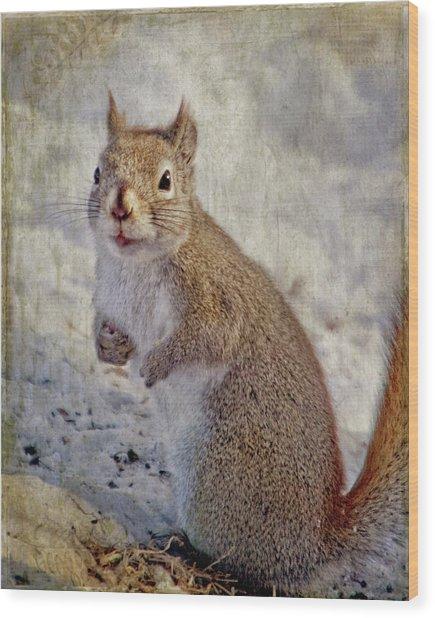 Spring Squirrel Wood Print