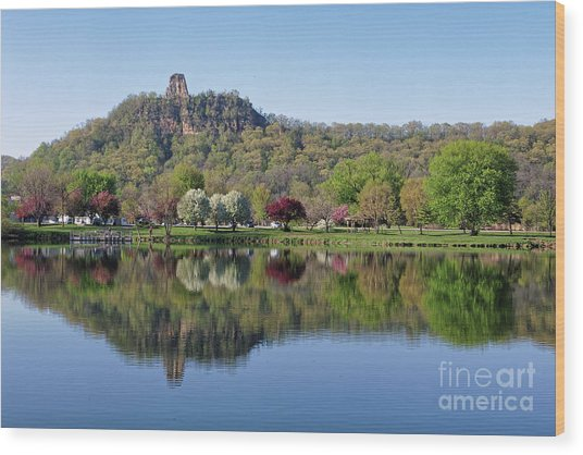 Spring Sugarloaf With Reflections Wood Print by Kari Yearous