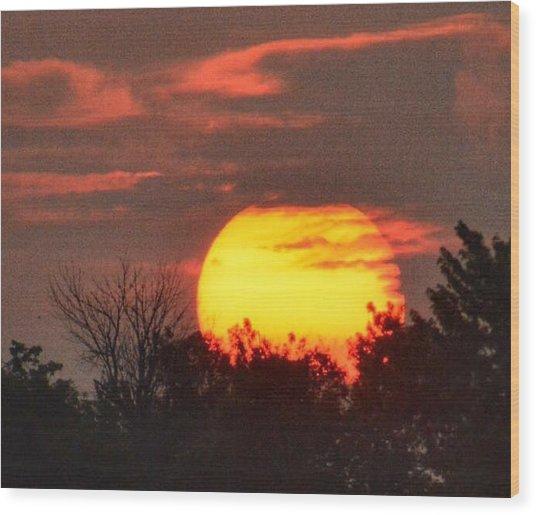 Spring Sunrise In Kentucky Wood Print