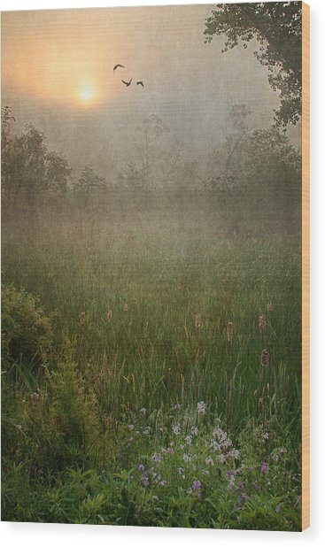 Spring Sunrise In The Valley Wood Print