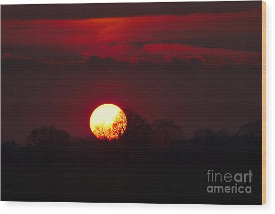 Wood Print featuring the photograph Spring Sunset by Jeremy Hayden