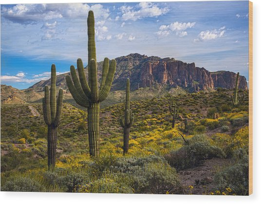 Spring Time At The Superstitions Wood Print