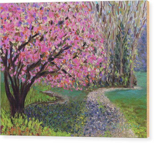 Spring Tree At New Pond Farm Wood Print