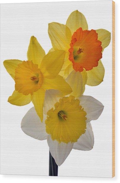 Spring Trio Wood Print
