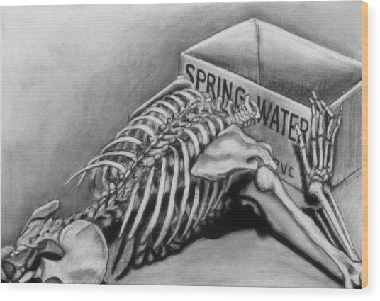 Spring Water Wood Print by John Clum