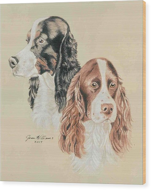 Springer Spaniels Wood Print by Joan Williams