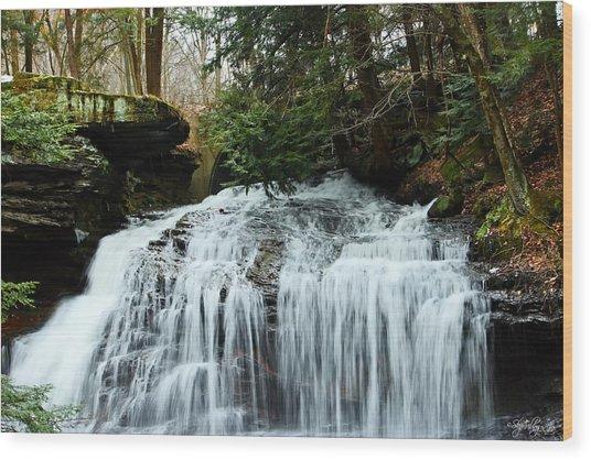 Springfield Falls Wood Print