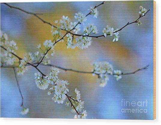 Springing To Life Wood Print