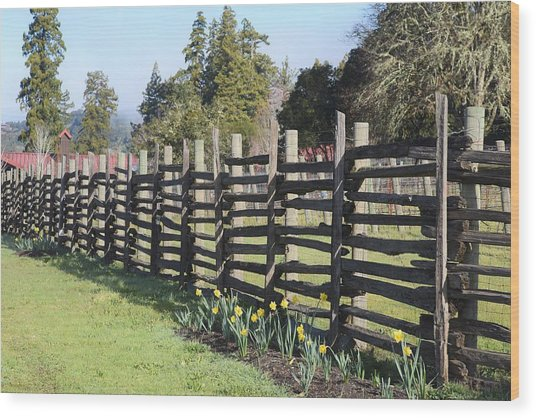Springtime In Anderson Valley Wood Print