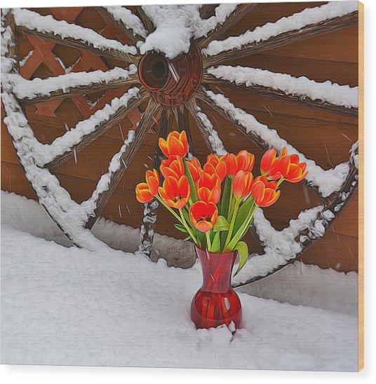 Springtime In Colorado Wood Print
