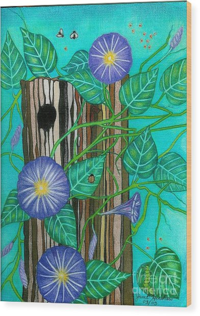 Springtime Purple Morning Glories Wood Print by Janet Hinshaw