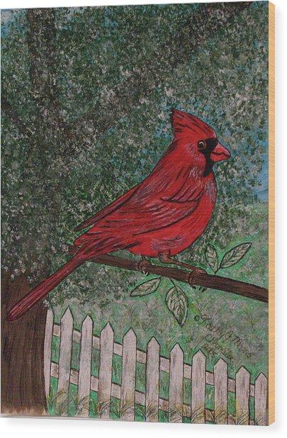 Springtime Red Cardinal Wood Print