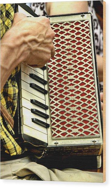 Squeeze Box Wood Print by Alan Skonieczny