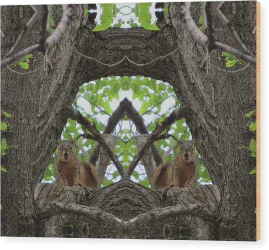 Squirrel Guardians Of The Doorway To A Green World Wood Print