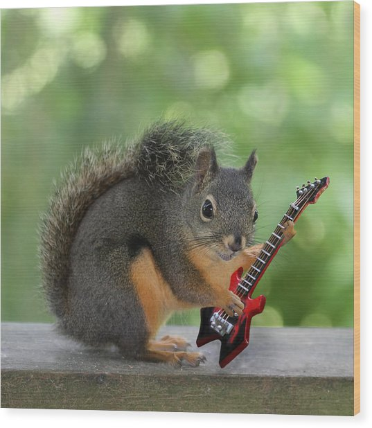 Squirrel Playing Electric Guitar Wood Print