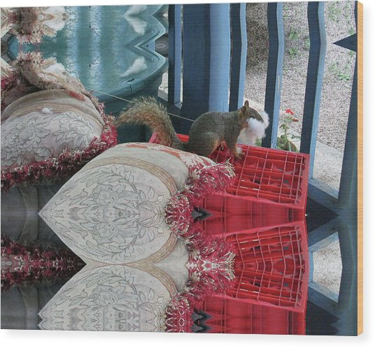 Squirrel Stealing Stuffing For A Nest Wood Print