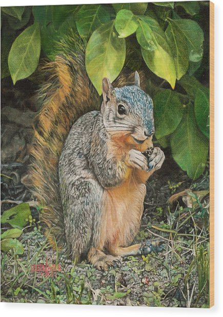 Squirrel Under Bush Wood Print