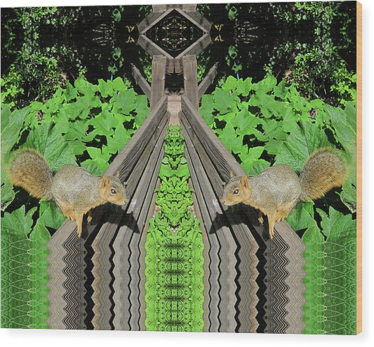 Squirrels On Fence In Surreal World Wood Print