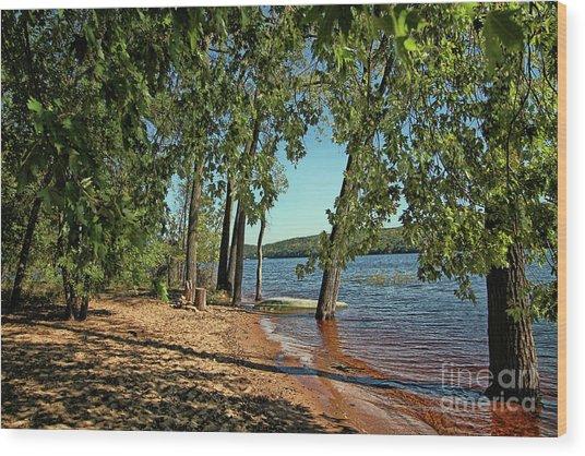 St Croix River Shoreline Wood Print