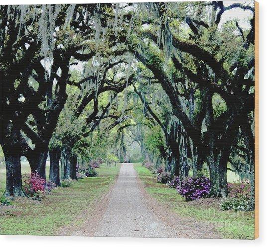 St Francisville Plantation Wood Print