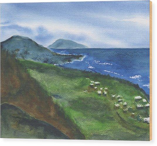 St Kitts View Wood Print