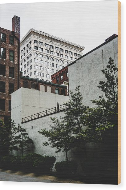 St. Louis Architecture. Downtown St. Louis. Wood Print by Dylan Murphy