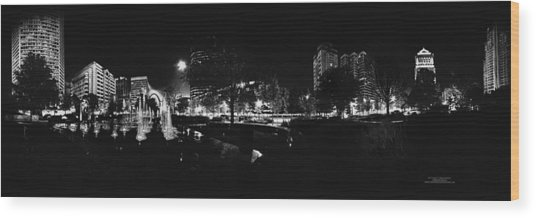St. Louis City Garden Night Bw For Glass Wood Print