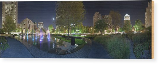 St. Louis City Garden Panorama Wood Print