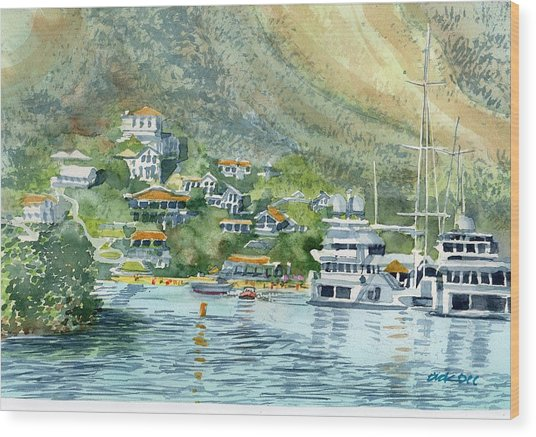St. Maarten Cove Wood Print