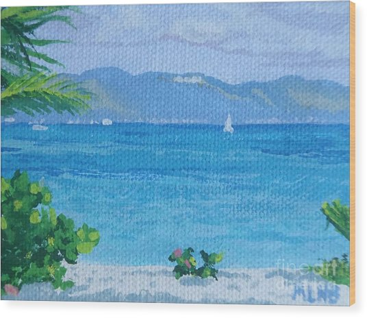 St Martin From Anguilla Wood Print