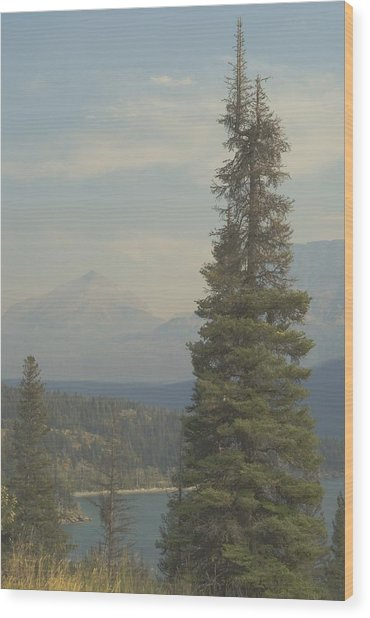 St. Mary Lake, Glacier, Montana Wood Print by Joseph Thiebes