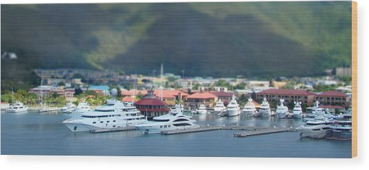 St. Thomas Us Virgin Islands Wood Print