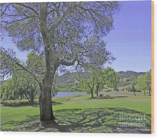 Stafford Lake Beauty Wood Print