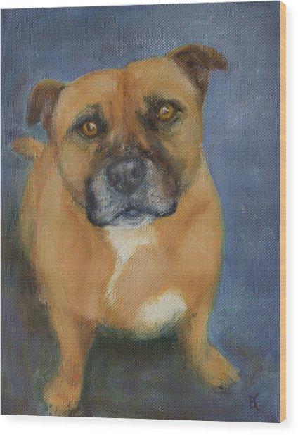 Staffordshire Bull Terrier Wood Print