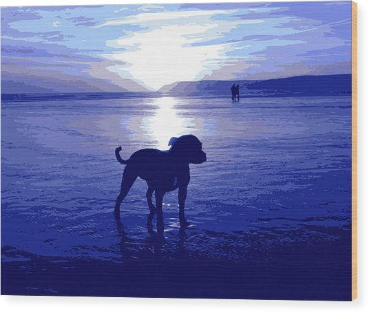Staffordshire Bull Terrier On Beach Wood Print