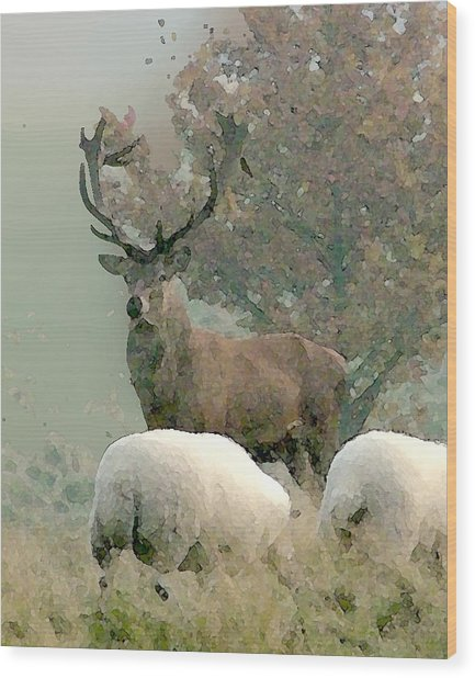 Stag Wood Print by John Bradburn