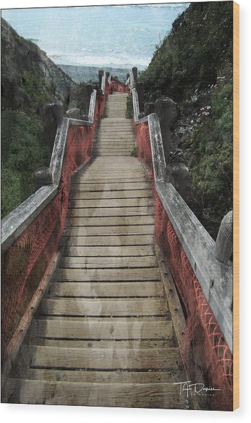 Stairs To Bliss Wood Print