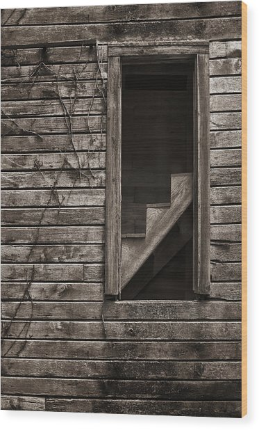 Stairs With A View Wood Print