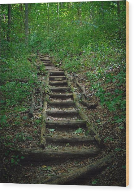 Stairway At Unicoi Gap On The At Wood Print