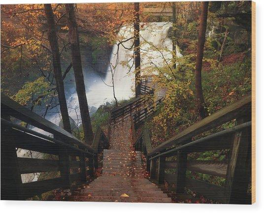 Stairway To Brandywine Wood Print