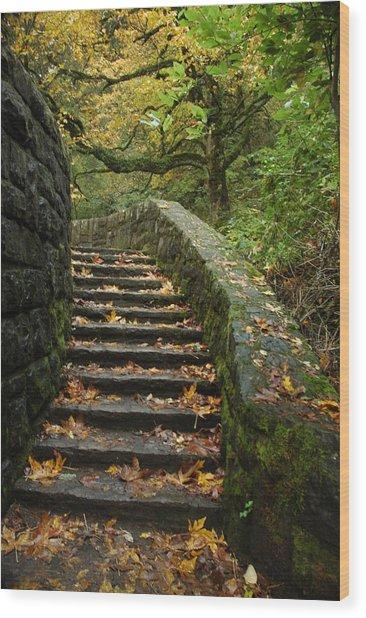 Stairway To Fall Wood Print by Lori Mellen-Pagliaro