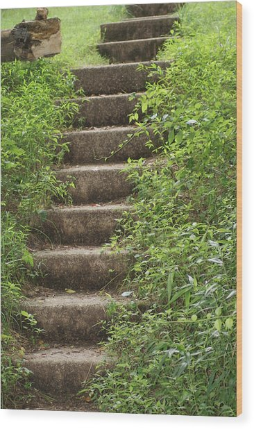 Stairway To Heaven Wood Print by Heather Green