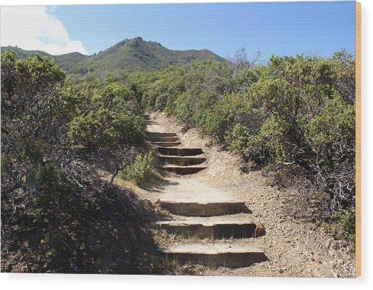 Stairway To Heaven On Mt Tamalpais Wood Print