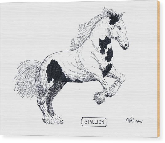 Stallion Wood Print by Frederic Kohli