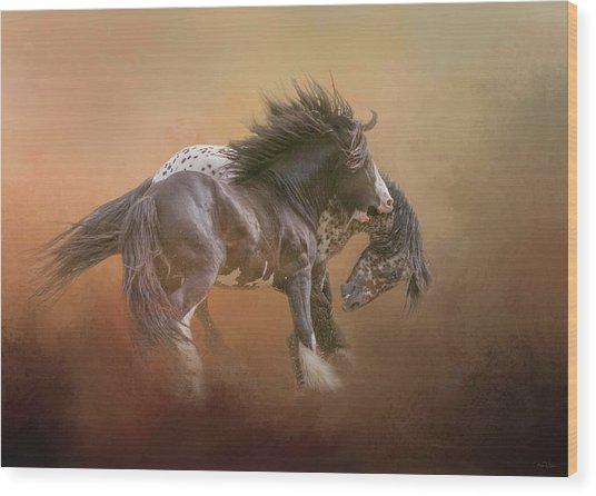 Stallion Play Wood Print