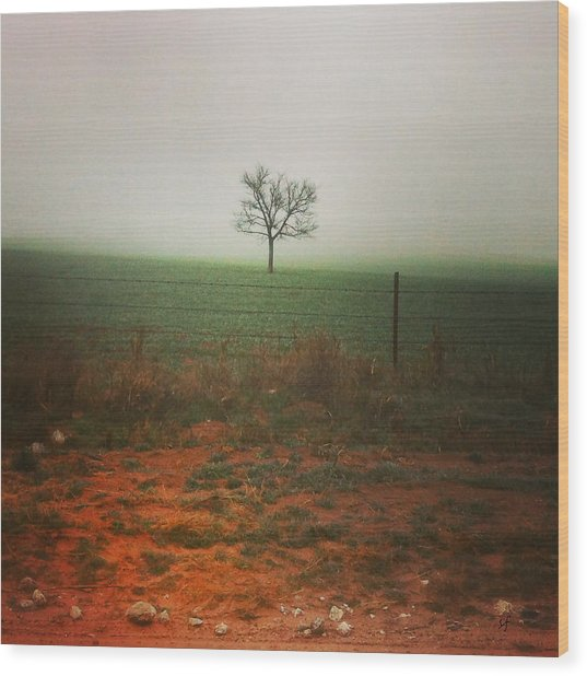 Standing Alone, A Lone Tree In The Fog. Wood Print