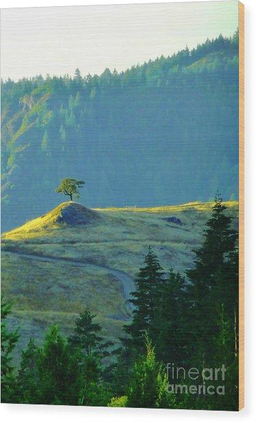 Standing Alone Wood Print by JoAnn SkyWatcher