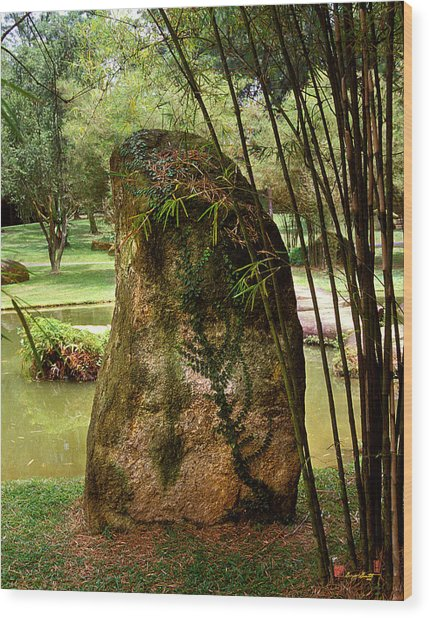 Standing Stone With Fern And Bamboo 19a Wood Print