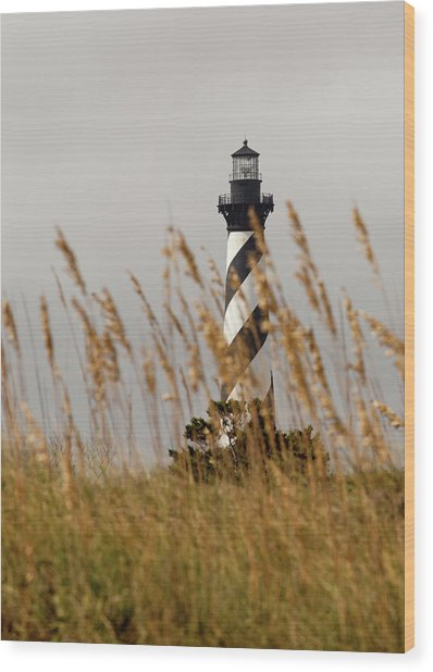 Standing Tall At Hatteras Wood Print